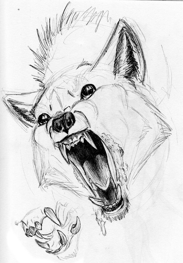 Drawn werewolf monster Wolf Wolf Teeth creepy etc