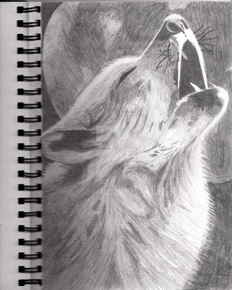 Drawn werewolf pencil drawing Drawing DeviantArt Drawing Wolf Wolf