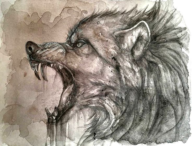 Drawn wolfman rage I 218 by files on