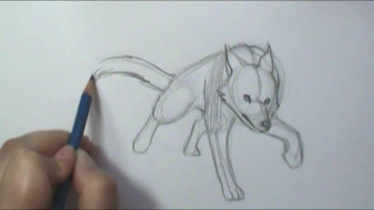 Drawn pitbull wolf To Running Draw How YouTube