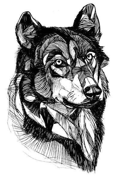 Drawn werewolf really Pinterest Really Head best geometric