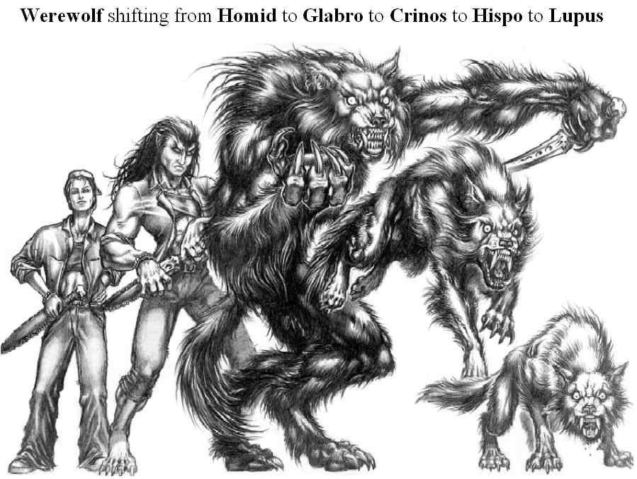 Drawn wolfman rpg Wikia Garou by Werewolf5forms powered