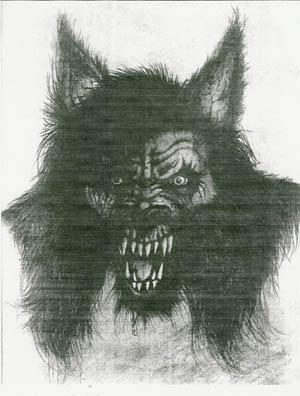 Drawn wolfman tall Michigan  Michigan Monster Dog