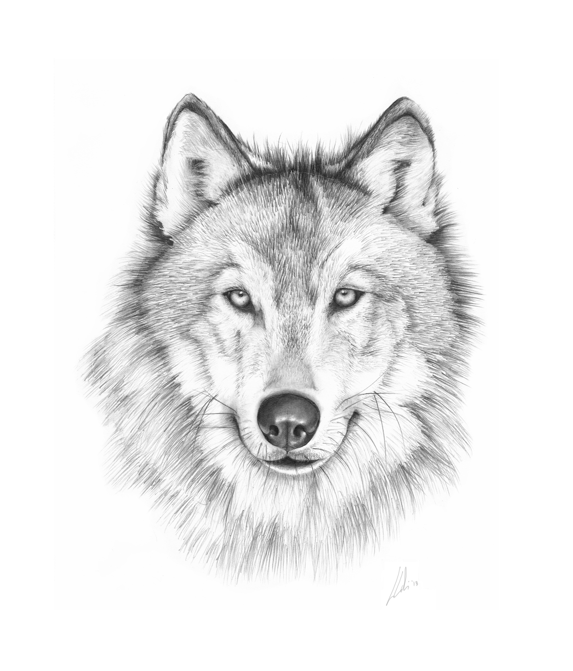 Drawn amd wolf On synopsis wolves Pin wolf!