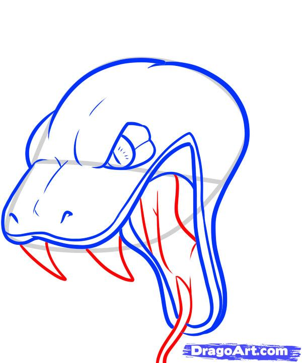 Drawn werewolf snake head Step How Step draw Snake