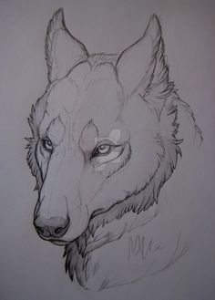 Drawn werewolf snake head Depicted teeth Search Wolf Wolves