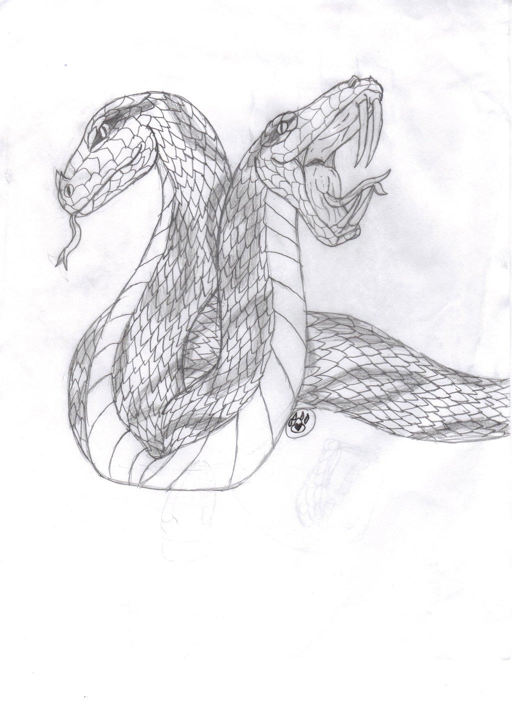 Drawn werewolf snake head Head snake Drawing Headed Two