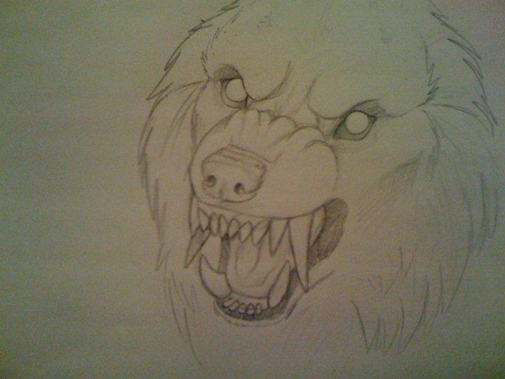 Drawn werewolf snarling wolf Werewolf tribalwolfie you at on