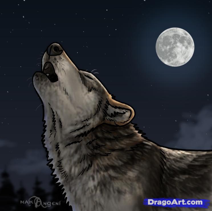 Drawn werewolf snarling wolf Prints Chicken sand(werewolf Image Smoothie