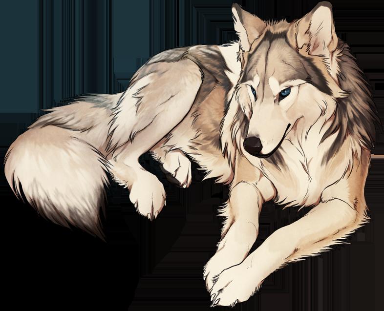 Drawn wolfman buff body More anime Pinterest best 138