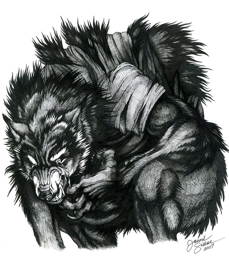 Drawn wolfman first Identity best True on about