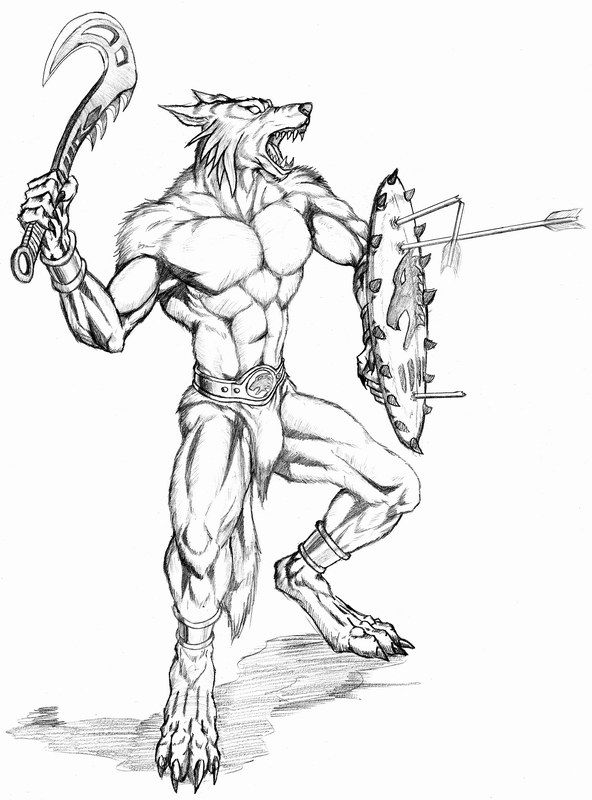 Drawn werewolf warrior About Armored Images 41