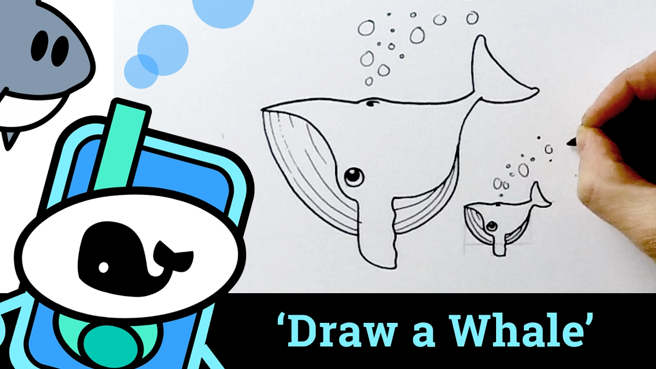 Drawn whale baby whale Draw easy a a simple