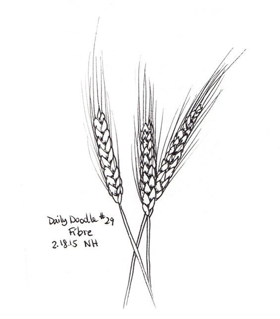Drawn grain simple This Best tattoo of wheat