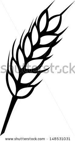 Drawn wheat Wheat Shutterstock Background best Autumn