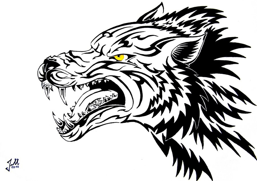 Wolf clipart snarl Wolf Wolf Snarling Drawing photo#24