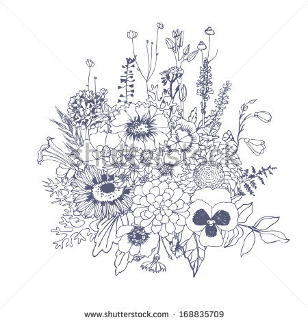 Drawn wildflower Stock of Vector composition of