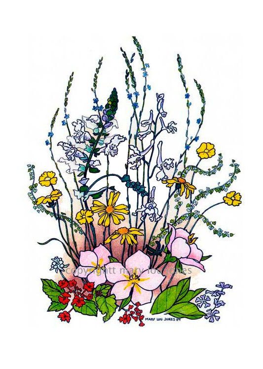 Wildflower clipart texas Items  10 to X