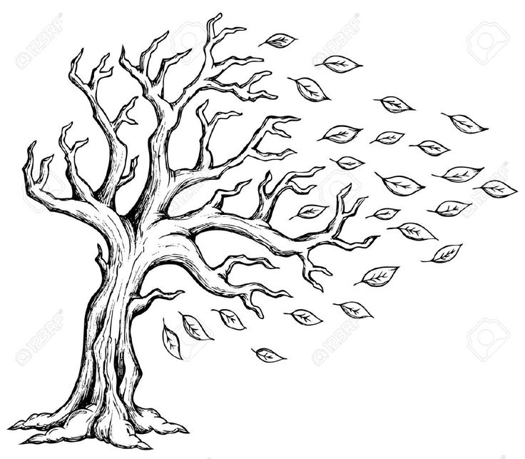 Drawn amd clipart Best Trees Wind on Drawing