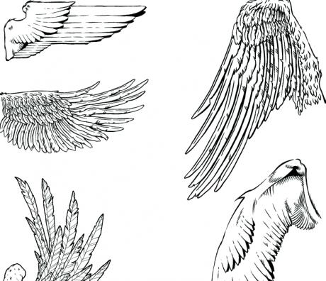 Drawn wings Detail drawn Wings Freebies: wings