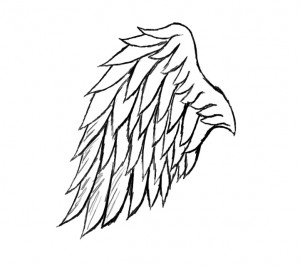Drawn wings Wings Drawing to  Groups