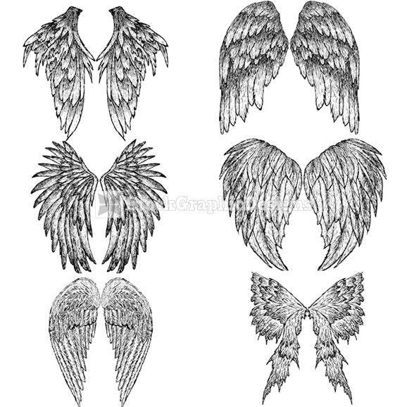 Drawn wings Feathered Best to Pinterest ideas