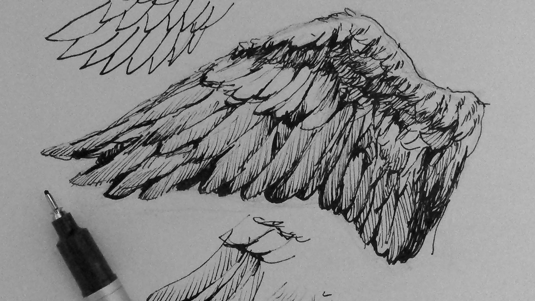 Drawn angel angel feather YouTube How to draw Ink