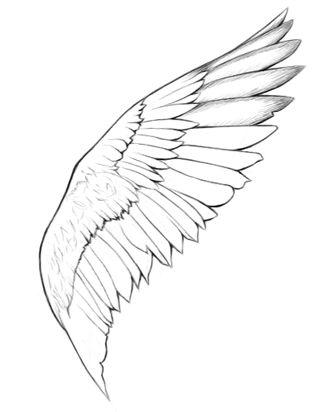Drawn angel big wing Sketch draw ideas on Pinterest