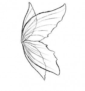 Wings clipart sketched On images Pinterest https://www google