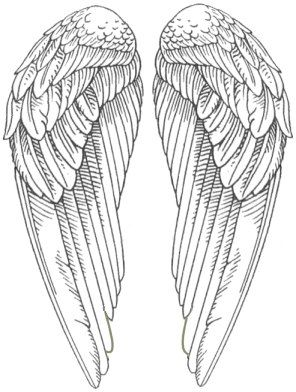 Wings clipart printable Pictures WHOLE wings on Snitch