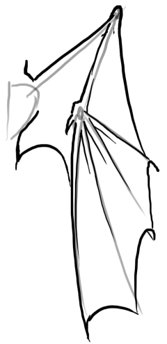 Drawn chinese dragon wing #4
