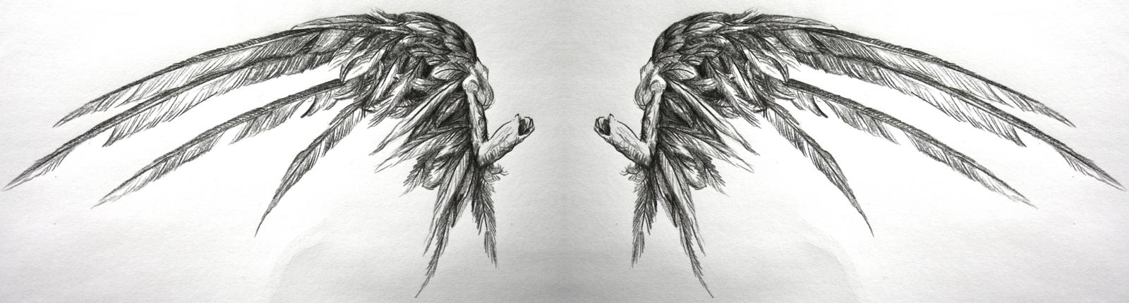 Drawn angel torn wing #6