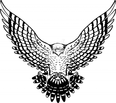 Wings clipart falcon wings And White Black Clipart Spread