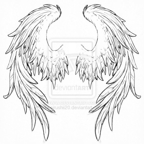 Drawn angel back More Pin wings  on