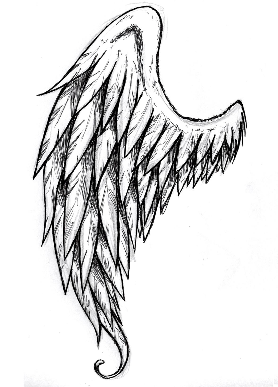 Drawn angel torn wing #5