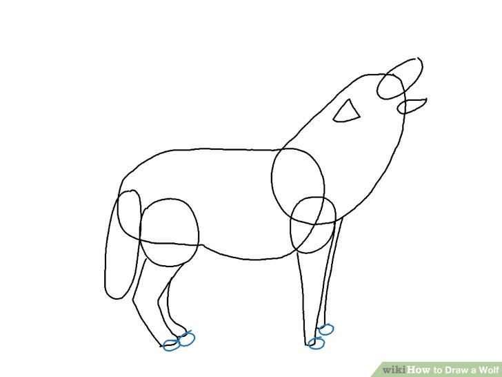 Drawn wolf Wolf a a Ways 4