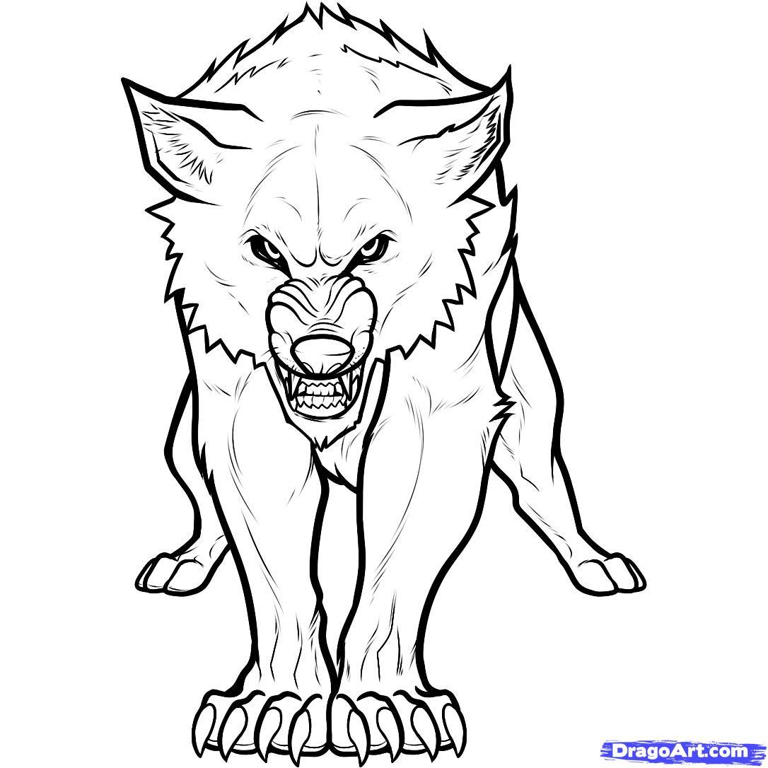 Drawn wolf Twilight Twilight a Wolf a