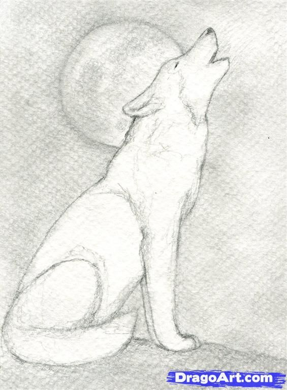 Drawn werewolf pencil drawing Wolf a Pinterest 9 Howling