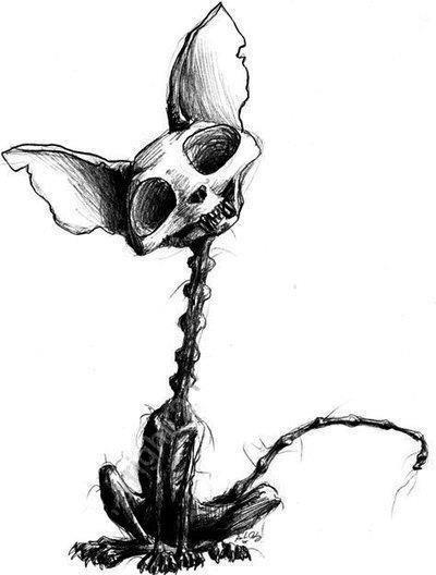 Drawn skeleton halloween Something 25+ Smash on skull