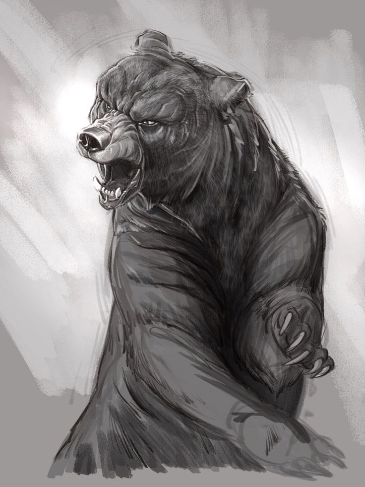 Drawn wolfman bear And images and on on