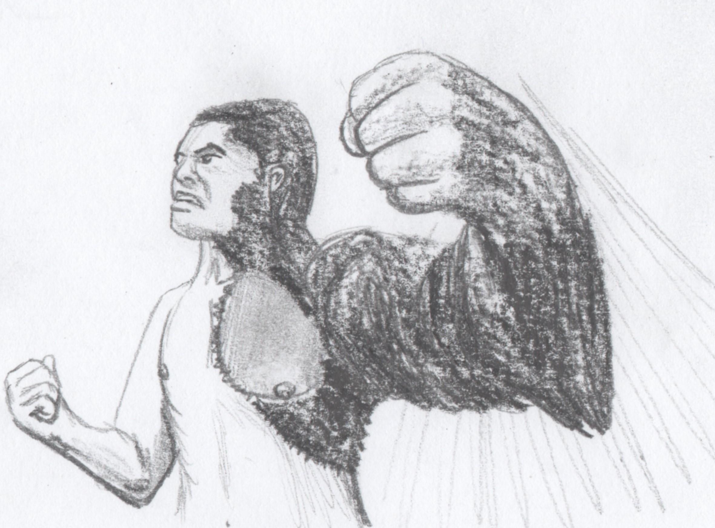 Drawn wolfman buff body Guy hairy half covering :
