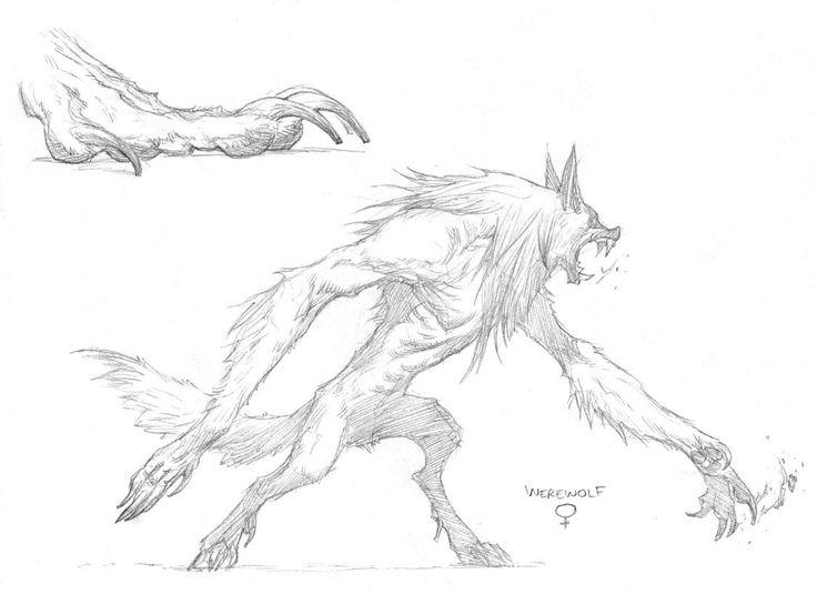 Drawn wolfman character development On werewolf werewolf Pinterest Female