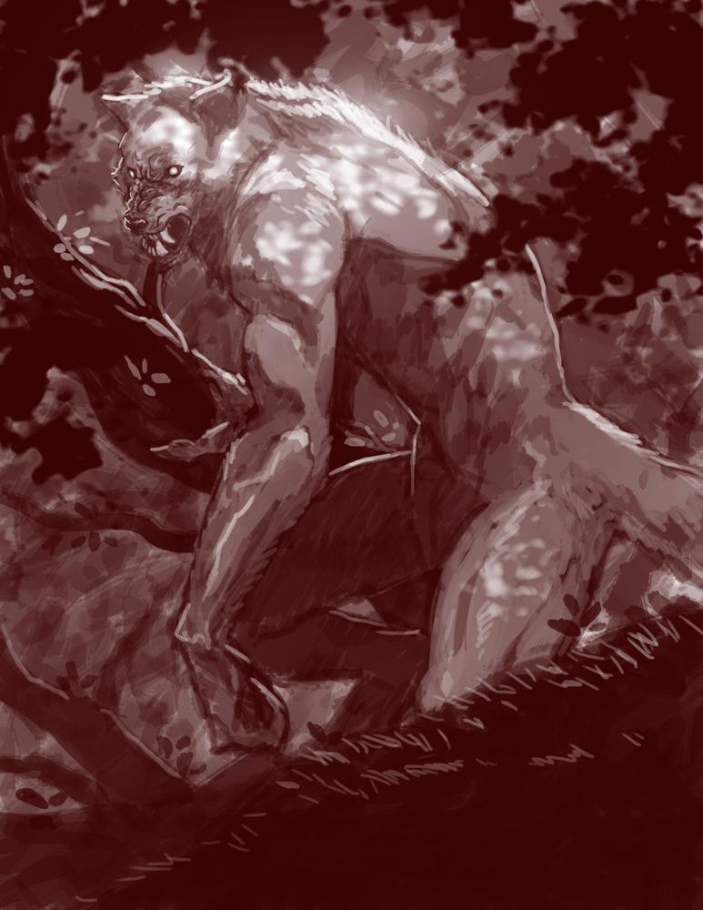 Drawn wolfman character development More Kris  Werewolf/Wolf DeviantArt