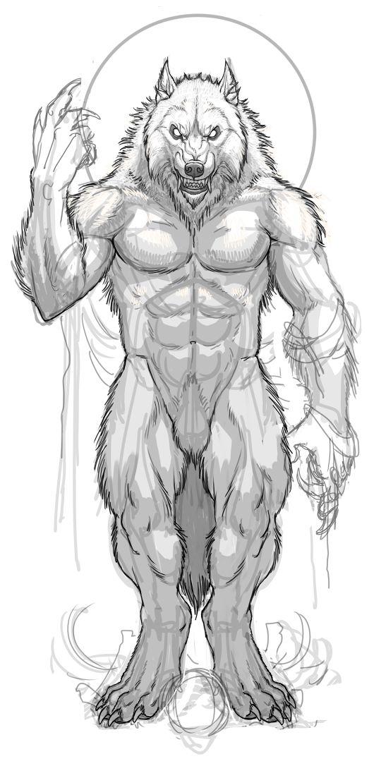 Drawn wolfman character development Head I 255 around werewolf