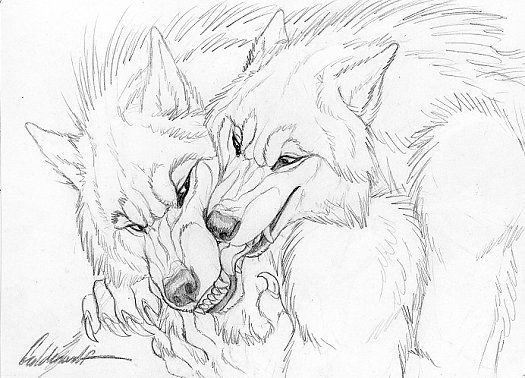 Drawn wolfman dragon eye About and and Wolves best