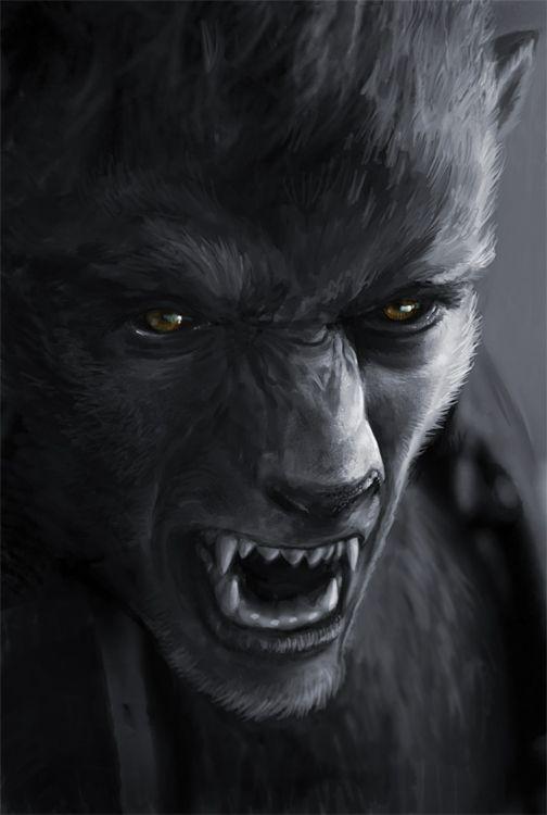 Drawn wolfman dragon eye 32  on best Pinterest