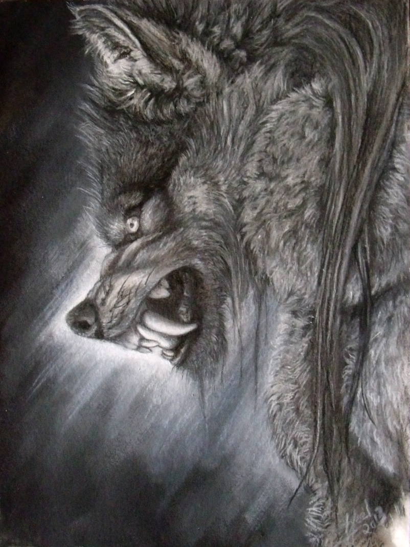 Drawn wolfman dragon eye Catch  I I'll deviantart