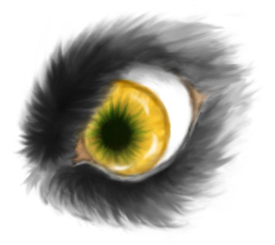 Drawn wolfman eye Werewolf photo#19 Eyes Werewolf eyes