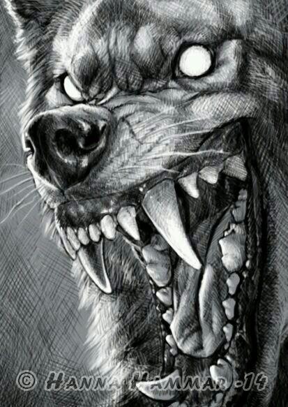 Drawn wolfman eye Art!) head my  گرگ