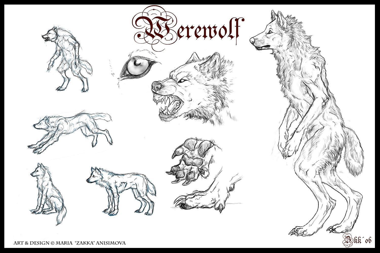 Drawn wolfman eye DeviantArt Archetypes on Werewolf Yellow